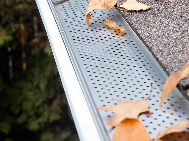 gutter guard stopping leaves